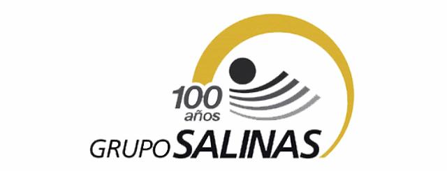 Logosalinas_LVA